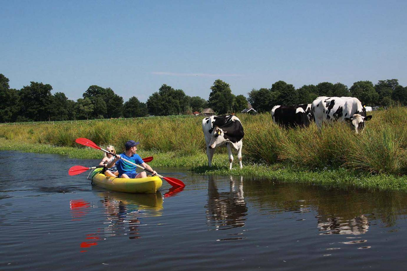 Explore the Netherlands countryside